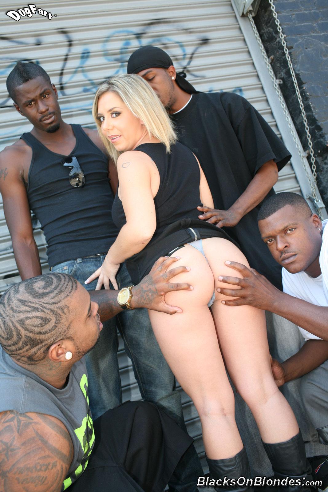 Abigaile johnson gets gangbanged by black cocks - 3 1